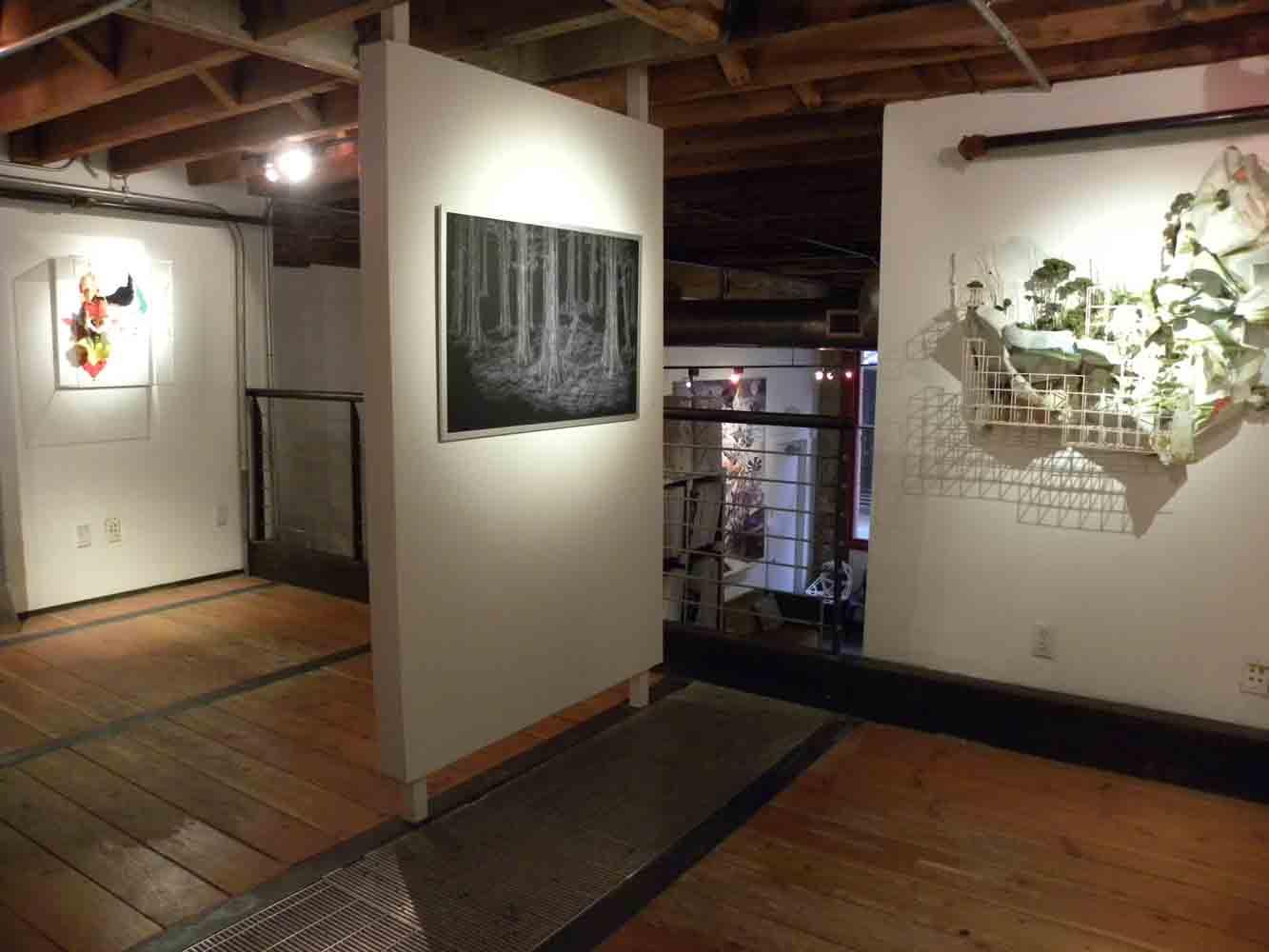Loft Gallery Design and Fabrication